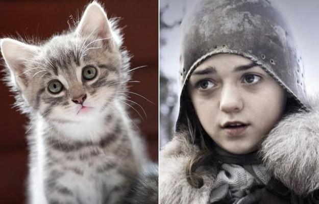 Universo Game of Thrones – E se os personagens…