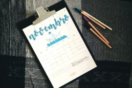 Planner do Geraldas – novembro de 2017